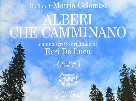 ALBERI CHE CAMMINANO